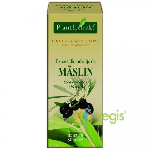 Extract Mladite Maslin 50ml - Remedii - Gemoderivate
