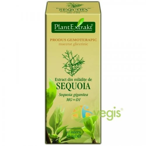 Extract Sequoia 50ml - Remedii - Gemoderivate