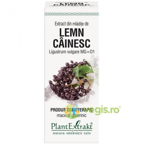 Extract Lemn Cainesc 50ml - Remedii - Gemoderivate